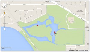 X Marks Location of Eagles in Warner Park