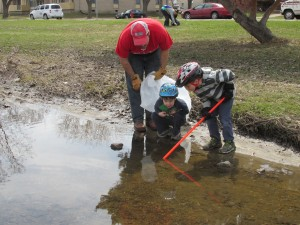 Grant and Henry Leydon stop to check out frogs in the storm ditch, while picking up trash.